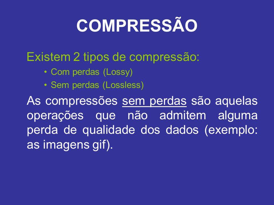 COMPRESSÃO Existem 2 tipos de compressão: Com perdas (Lossy) Sem perdas (Lossless) As compressões sem perdas são aquelas operações que não admitem alg