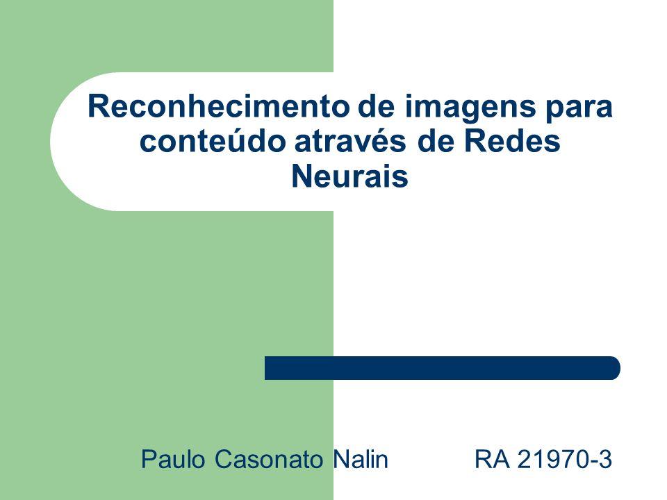 Reconhecimento de imagens para conteúdo através de Redes Neurais Paulo Casonato Nalin RA 21970-3