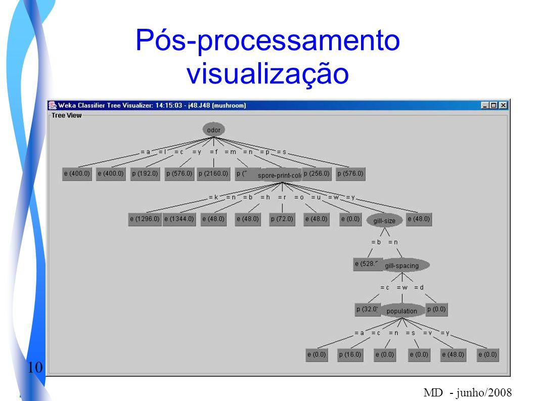 10 MD - junho/2008 Pós-processamento visualização