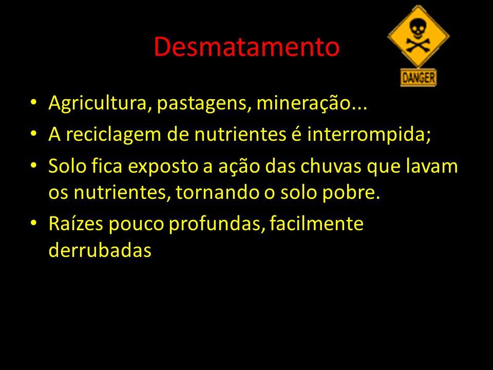 Desmatamento Agricultura, pastagens, mineração... A reciclagem de nutrientes é interrompida; Solo fica exposto a ação das chuvas que lavam os nutrient