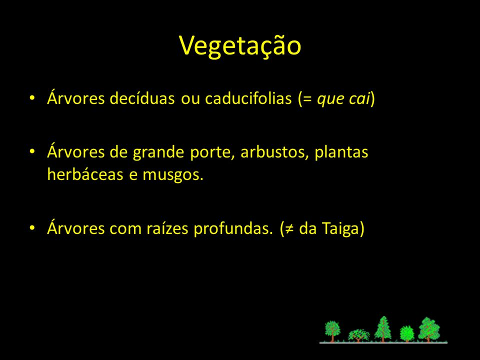 Vegetação Árvores decíduas ou caducifolias (= que cai) Árvores de grande porte, arbustos, plantas herbáceas e musgos. Árvores com raízes profundas. (