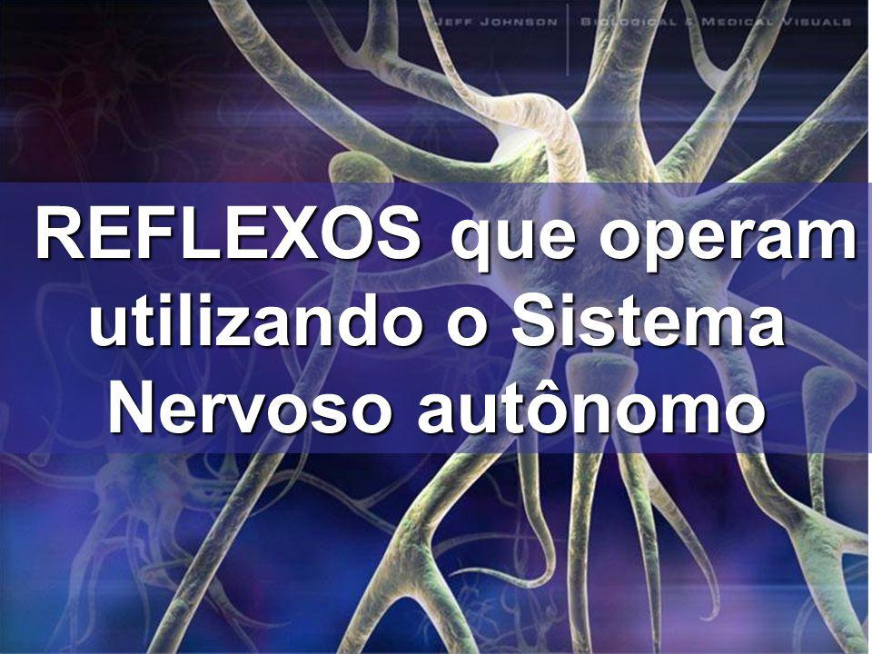 REFLEXOS que operam utilizando o Sistema Nervoso autônomo REFLEXOS que operam utilizando o Sistema Nervoso autônomo