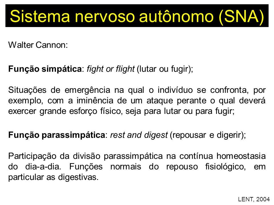 Sistema nervoso autônomo (SNA) Walter Cannon: Função simpática: fight or flight (lutar ou fugir); Situações de emergência na qual o indivíduo se confr