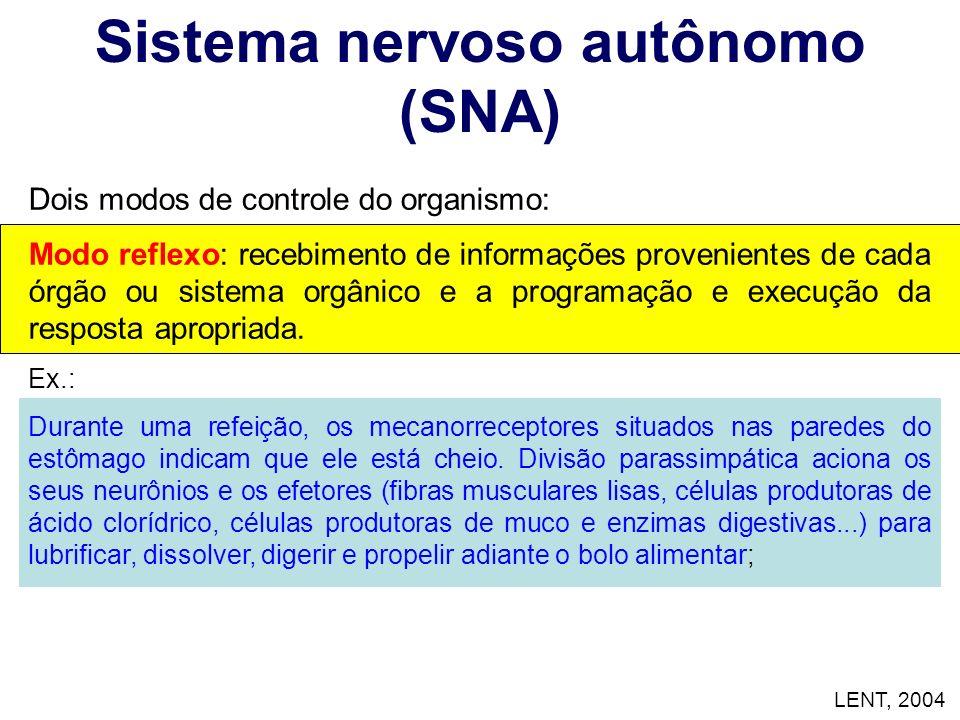Sistema nervoso autônomo (SNA) Dois modos de controle do organismo: Modo reflexo: recebimento de informações provenientes de cada órgão ou sistema org