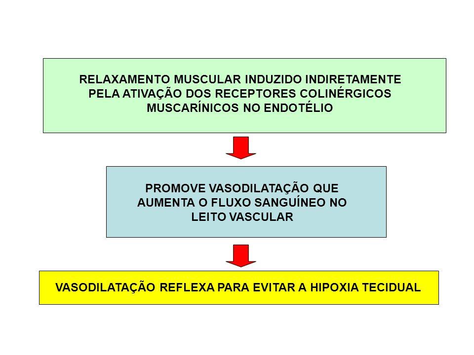 RELAXAMENTO MUSCULAR INDUZIDO INDIRETAMENTE PELA ATIVAÇÃO DOS RECEPTORES COLINÉRGICOS MUSCARÍNICOS NO ENDOTÉLIO PROMOVE VASODILATAÇÃO QUE AUMENTA O FL