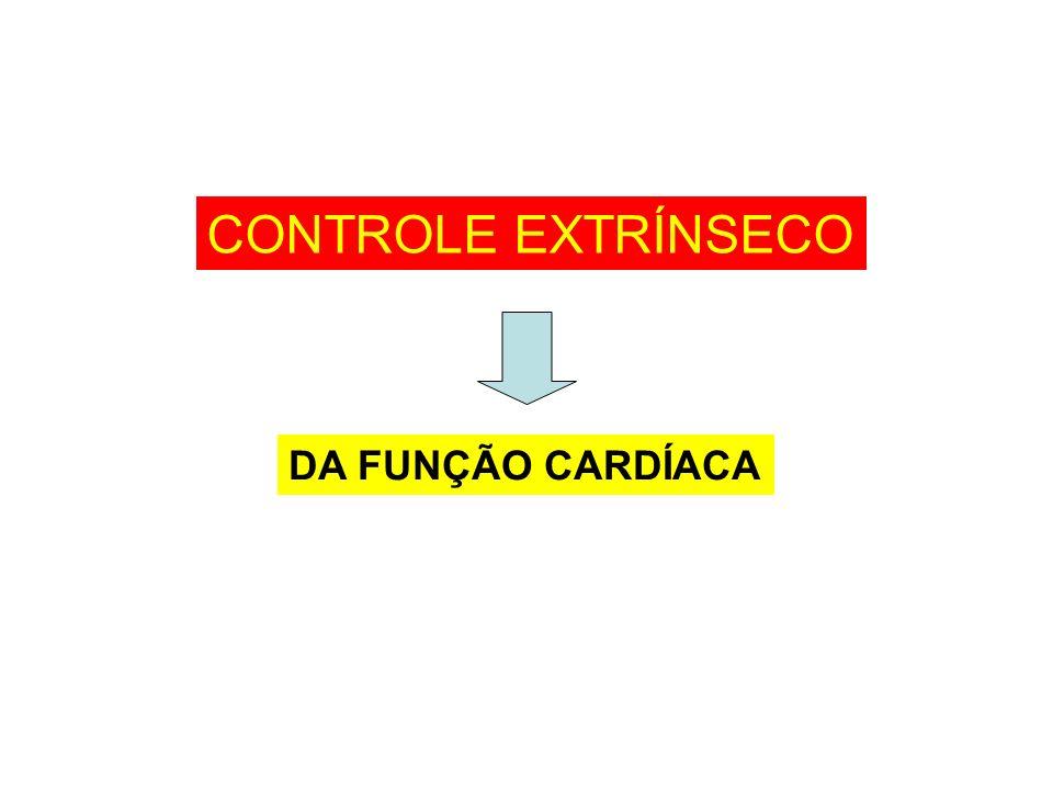 CONTROLE EXTRÍNSECO DA FUNÇÃO CARDÍACA
