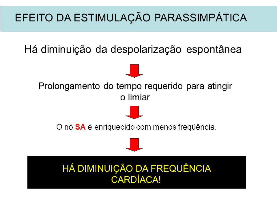 Há diminuição da despolarização espontânea Prolongamento do tempo requerido para atingir o limiar O nó SA é enriquecido com menos freqüência. HÁ DIMIN