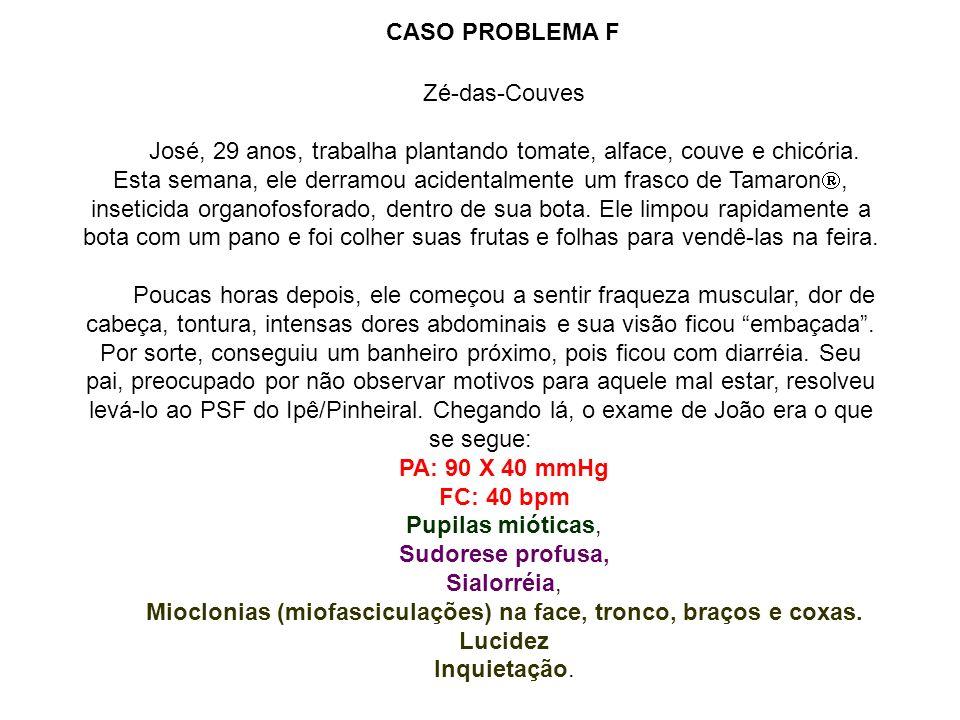Zé-das-Couves José, 29 anos, trabalha plantando tomate, alface, couve e chicória. Esta semana, ele derramou acidentalmente um frasco de Tamaron, inset