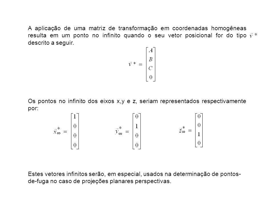 A aplicação de uma matriz de transformação em coordenadas homogêneas resulta em um ponto no infinito quando o seu vetor posicional for do tipo descrito a seguir.