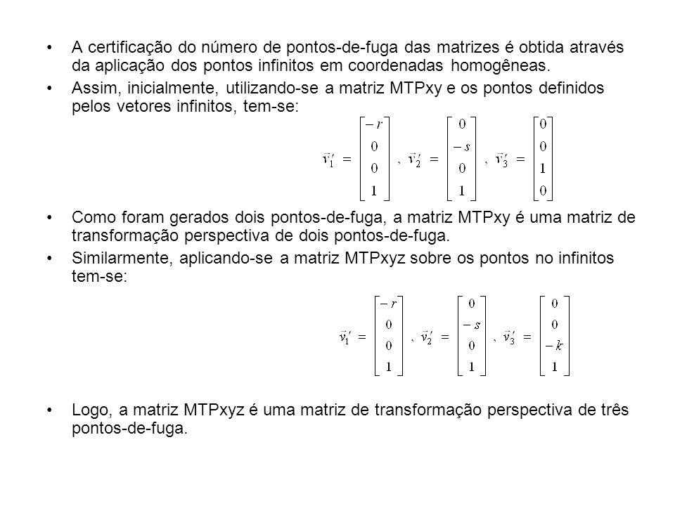 A certificação do número de pontos-de-fuga das matrizes é obtida através da aplicação dos pontos infinitos em coordenadas homogêneas. Assim, inicialme
