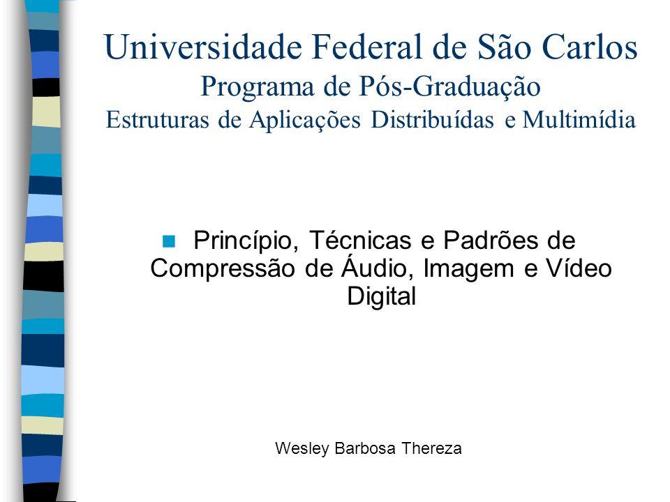 Universidade Federal de São Carlos Programa de Pós-Graduação Estruturas de Aplicações Distribuídas e Multimídia Princípio, Técnicas e Padrões de Compr
