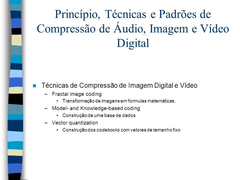 Princípio, Técnicas e Padrões de Compressão de Áudio, Imagem e Vídeo Digital Técnicas de Compressão de Imagem Digital e Vídeo –Fractal image coding Tr