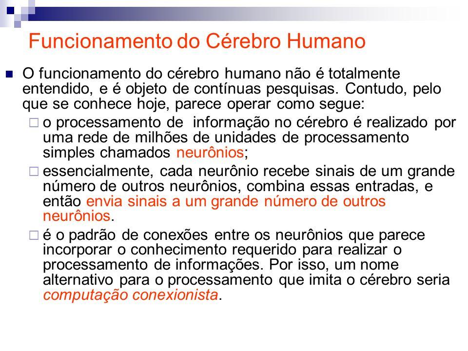 Funcionamento do Cérebro Humano O funcionamento do cérebro humano não é totalmente entendido, e é objeto de contínuas pesquisas. Contudo, pelo que se