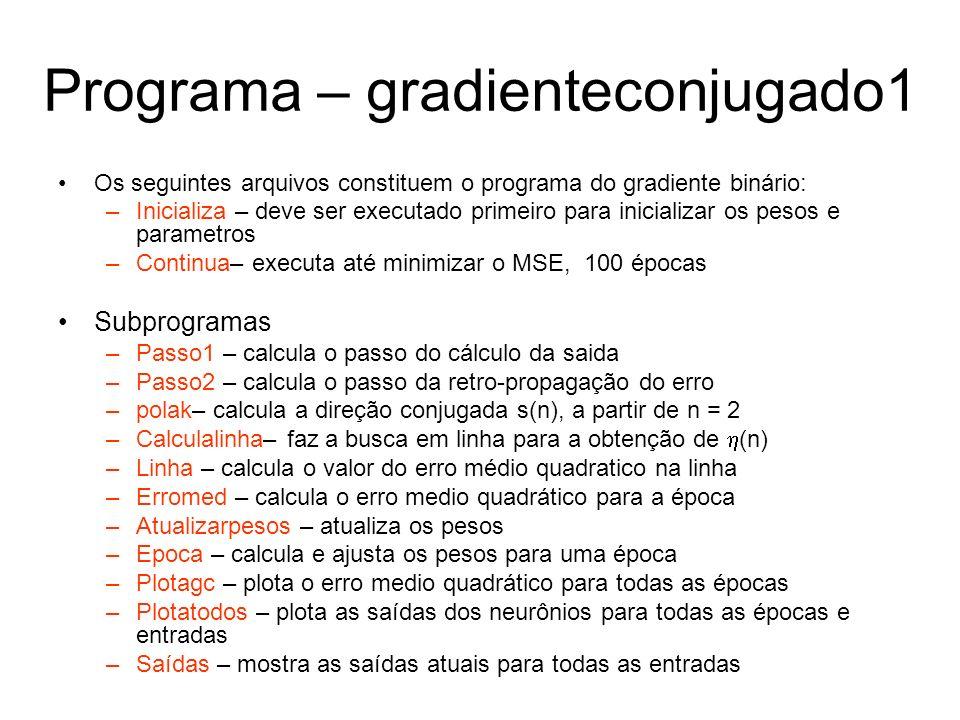 Programa – gradienteconjugado1 Os seguintes arquivos constituem o programa do gradiente binário: –Inicializa – deve ser executado primeiro para inicia