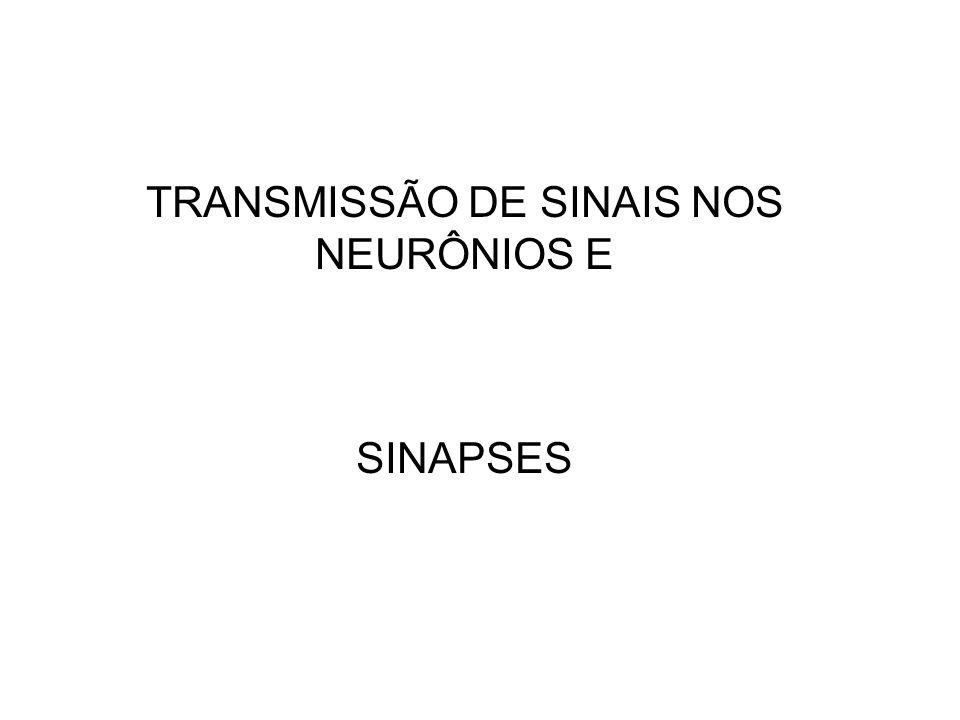 TRANSMISSÃO DE SINAIS NOS NEURÔNIOS E SINAPSES