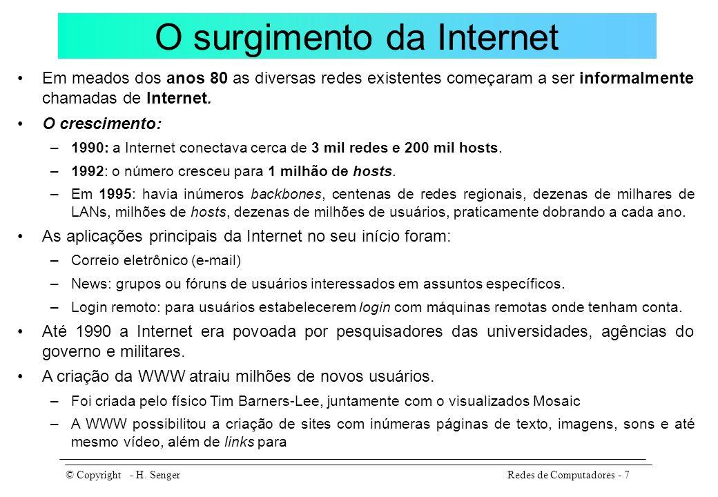 A Internet no Brasil 1988: já se formavam no Brasil alguns embriões independentes de redes, interligando grandes universidades e centros de pesquisa do Rio de Janeiro, São Paulo e Porto Alegre aos Estados Unidos.