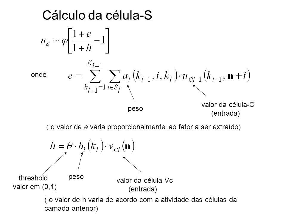 onde ( o valor de e varia proporcionalmente ao fator a ser extraído) ( o valor de h varia de acordo com a atividade das células da camada anterior) Cálculo da célula-S valor da célula-Vc (entrada) peso valor da célula-C (entrada) peso threshold valor em (0,1)