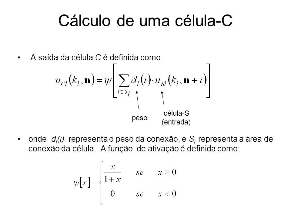Cálculo de uma célula-C A saída da célula C é definida como: onde d l (i) representa o peso da conexão, e S l representa a área de conexão da célula.