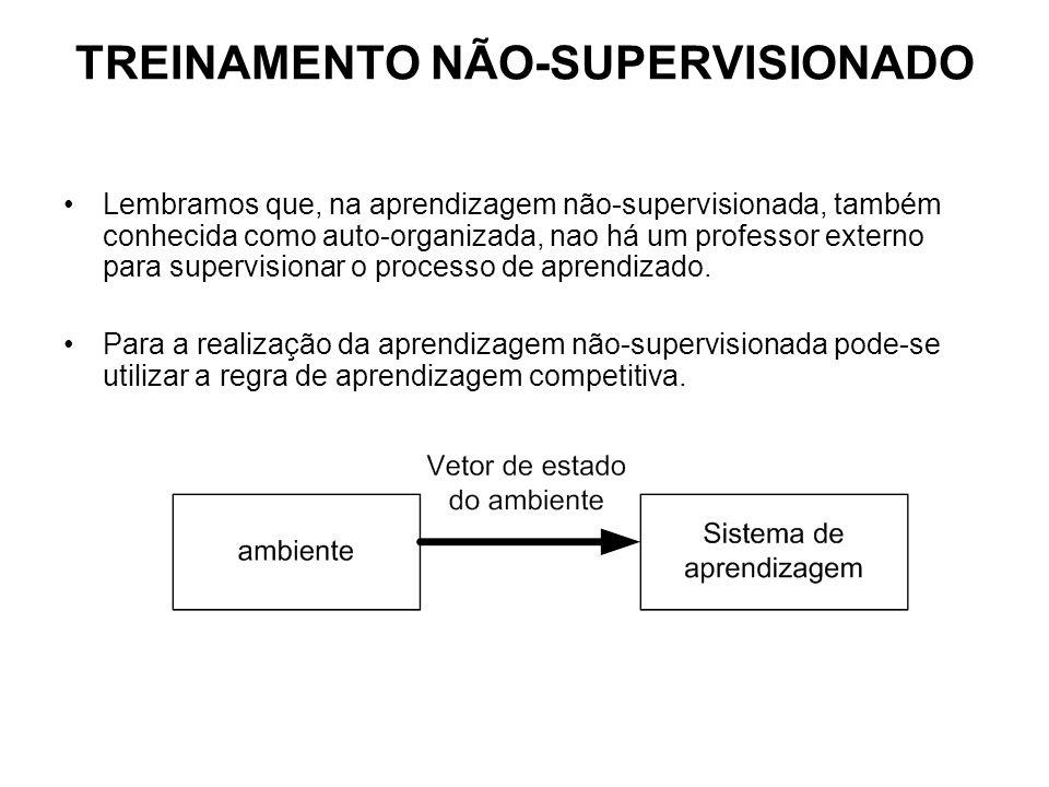 TREINAMENTO NÃO-SUPERVISIONADO Lembramos que, na aprendizagem não-supervisionada, também conhecida como auto-organizada, nao há um professor externo para supervisionar o processo de aprendizado.
