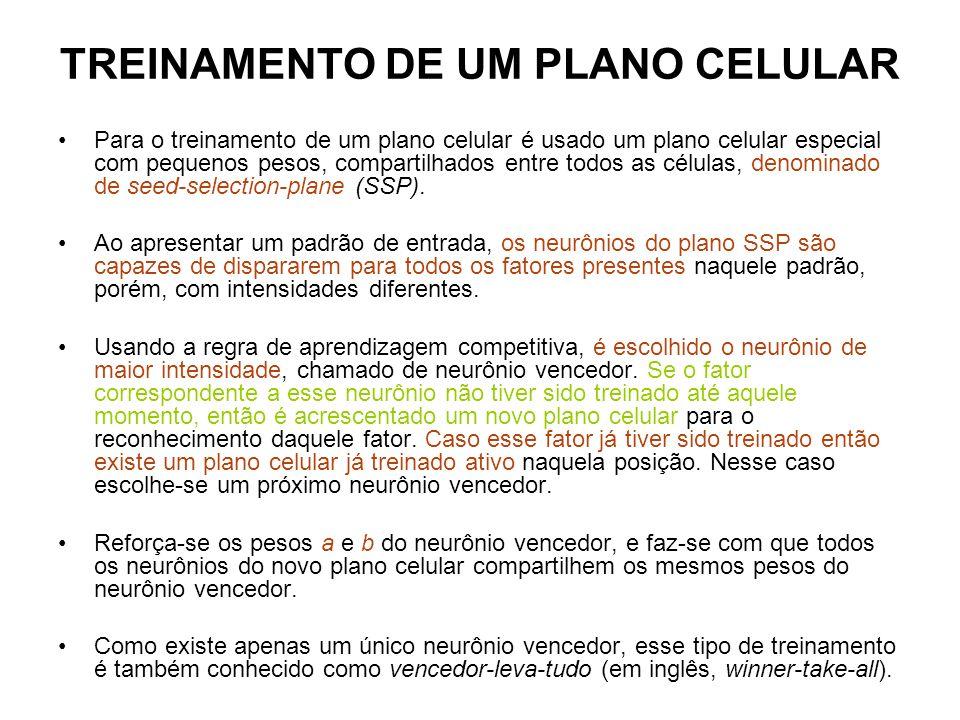 TREINAMENTO DE UM PLANO CELULAR Para o treinamento de um plano celular é usado um plano celular especial com pequenos pesos, compartilhados entre todos as células, denominado de seed-selection-plane (SSP).
