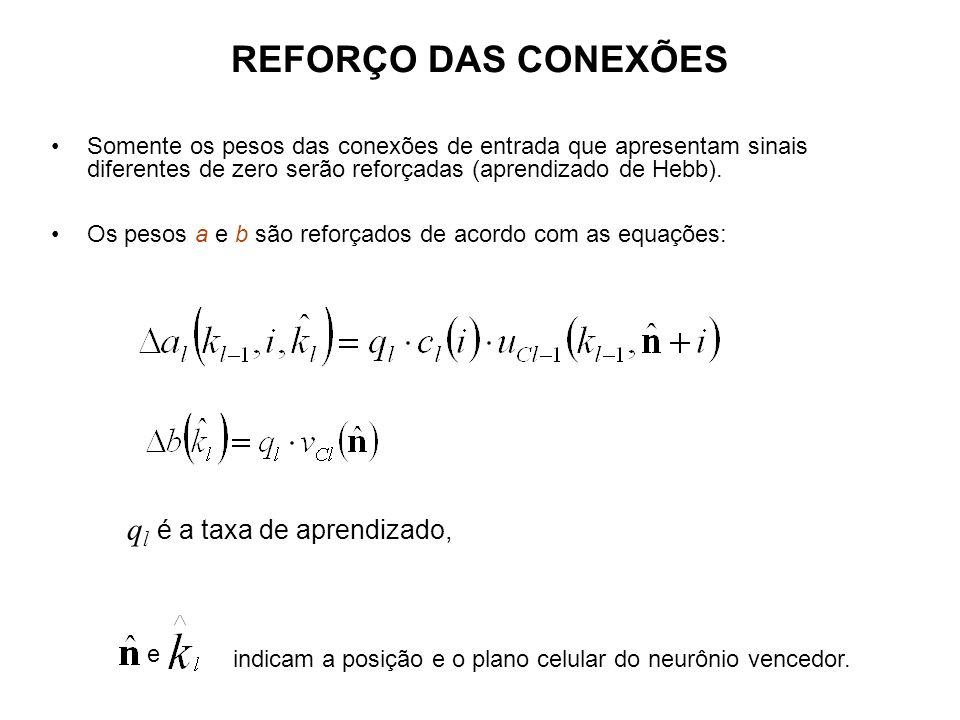 REFORÇO DAS CONEXÕES Somente os pesos das conexões de entrada que apresentam sinais diferentes de zero serão reforçadas (aprendizado de Hebb). Os peso