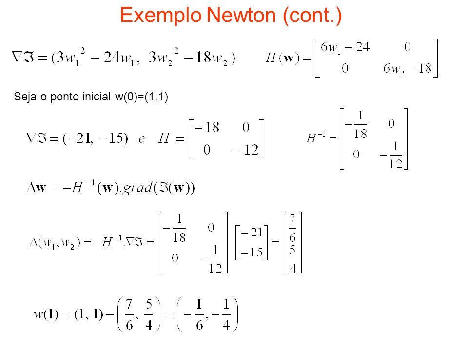 Exemplo Newton (cont.) Seja o ponto inicial w(0)=(1,1)