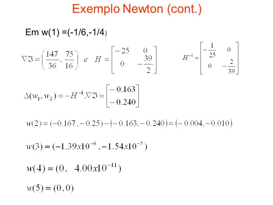 Exemplo Newton (cont.) Em w(1) =(-1/6,-1/4 )