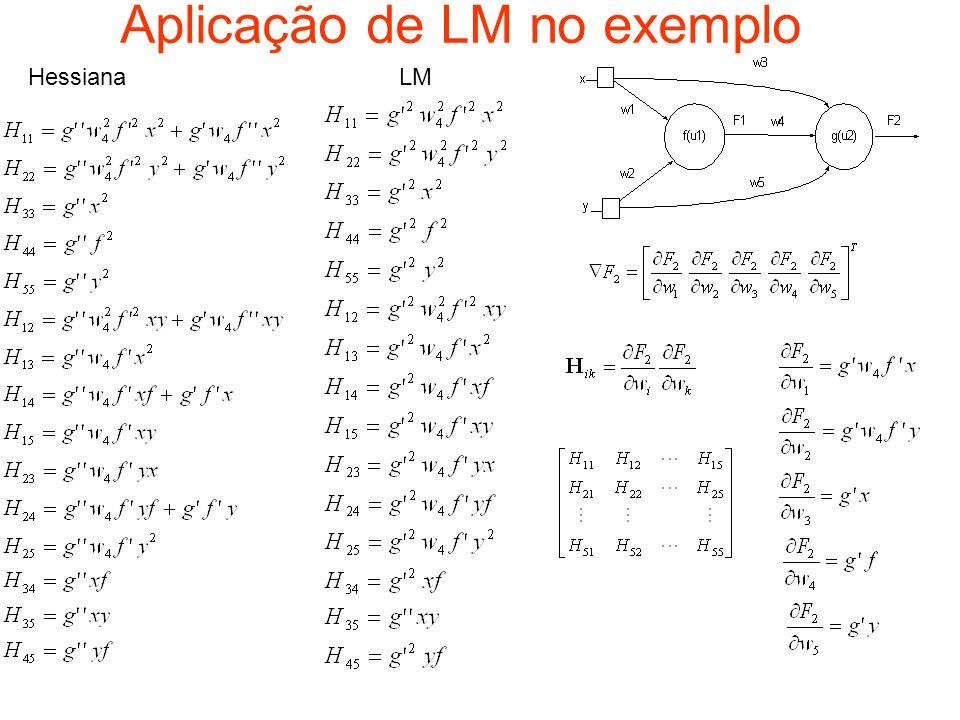 Aplicação de LM no exemplo HessianaLM