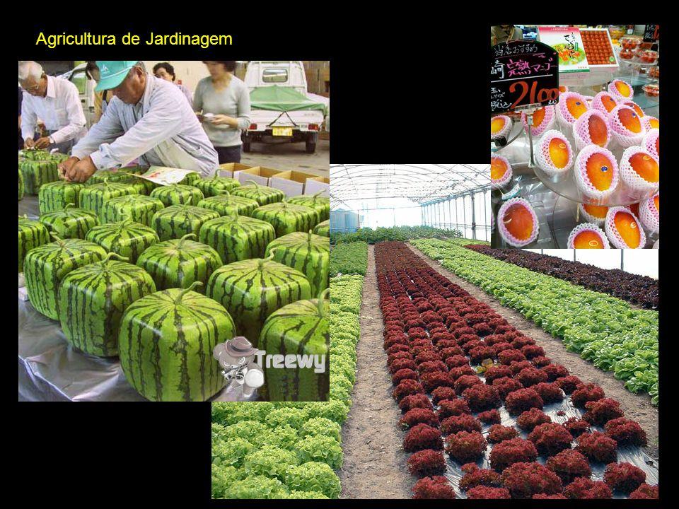 Agricultura Cooperativista