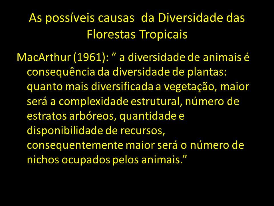 As possíveis causas da Diversidade das Florestas Tropicais MacArthur (1961): a diversidade de animais é consequência da diversidade de plantas: quanto
