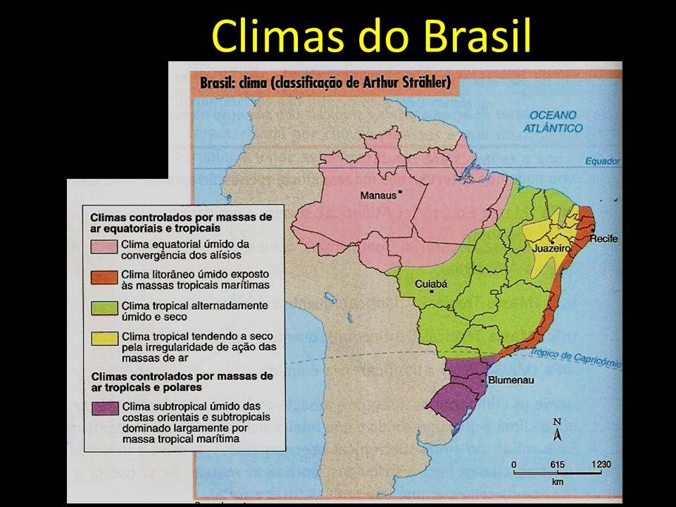 Vegetações do Brasil