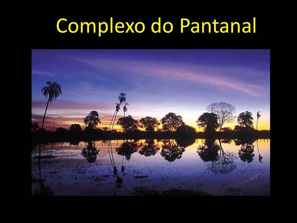 Complexo do Pantanal