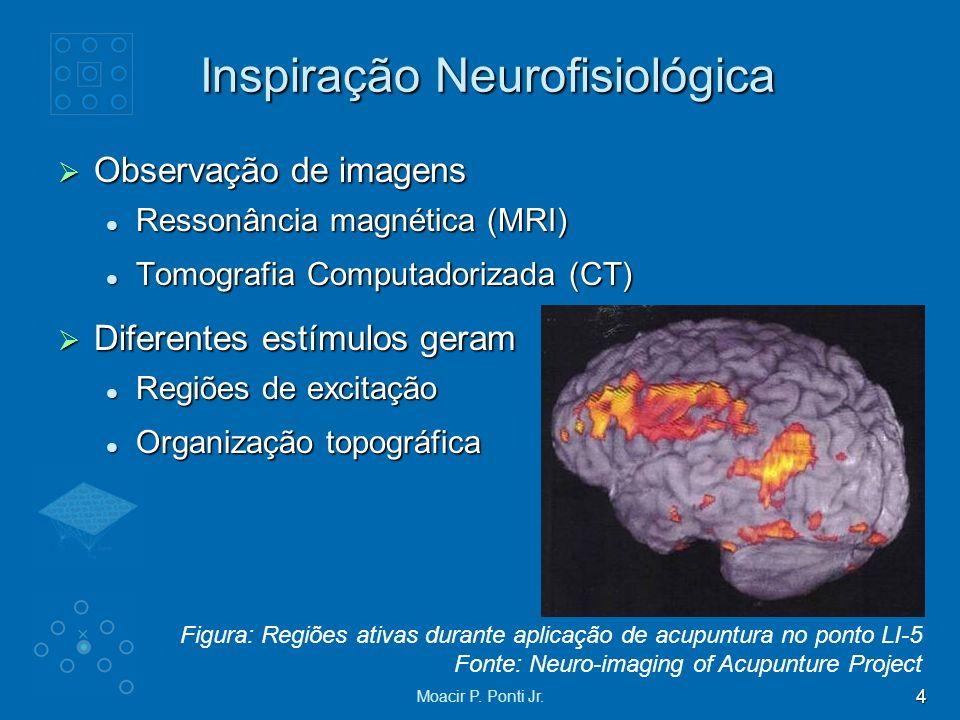 4 Moacir P. Ponti Jr. Inspiração Neurofisiológica Observação de imagens Observação de imagens Ressonância magnética (MRI) Ressonância magnética (MRI)
