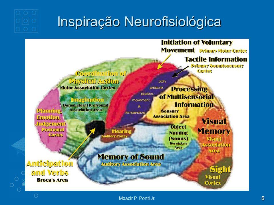 5 Moacir P. Ponti Jr. Inspiração Neurofisiológica