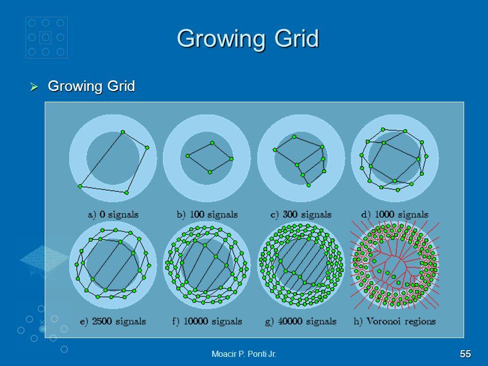 55 Moacir P. Ponti Jr. Growing Grid Growing Grid Growing Grid