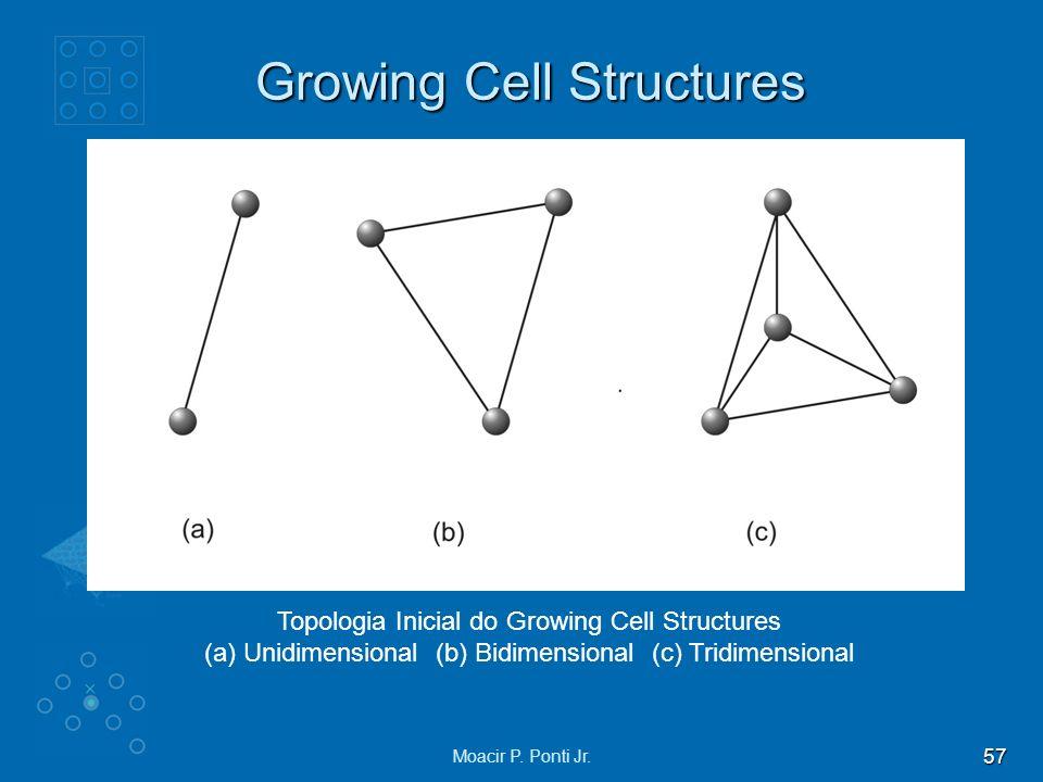 57 Moacir P. Ponti Jr. Growing Cell Structures Topologia Inicial do Growing Cell Structures (a) Unidimensional (b) Bidimensional (c) Tridimensional