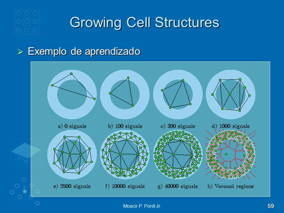 59 Moacir P. Ponti Jr. Growing Cell Structures Exemplo de aprendizado Exemplo de aprendizado