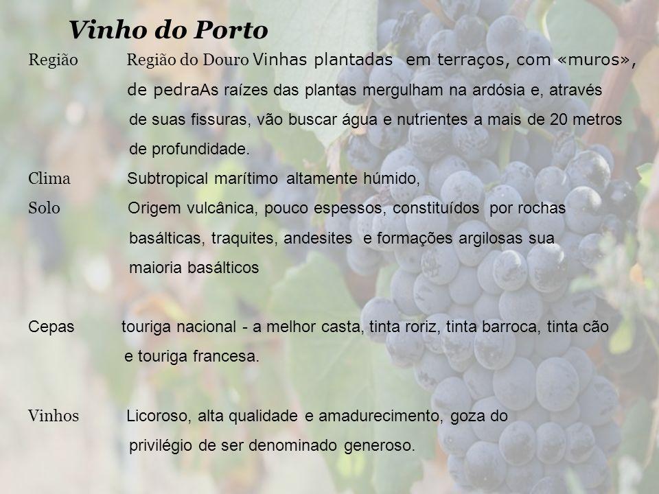 Vinho do Porto Região Região do Douro Vinhas plantadas em terraços, com «muros», de pedra As raízes das plantas mergulham na ardósia e, através de sua