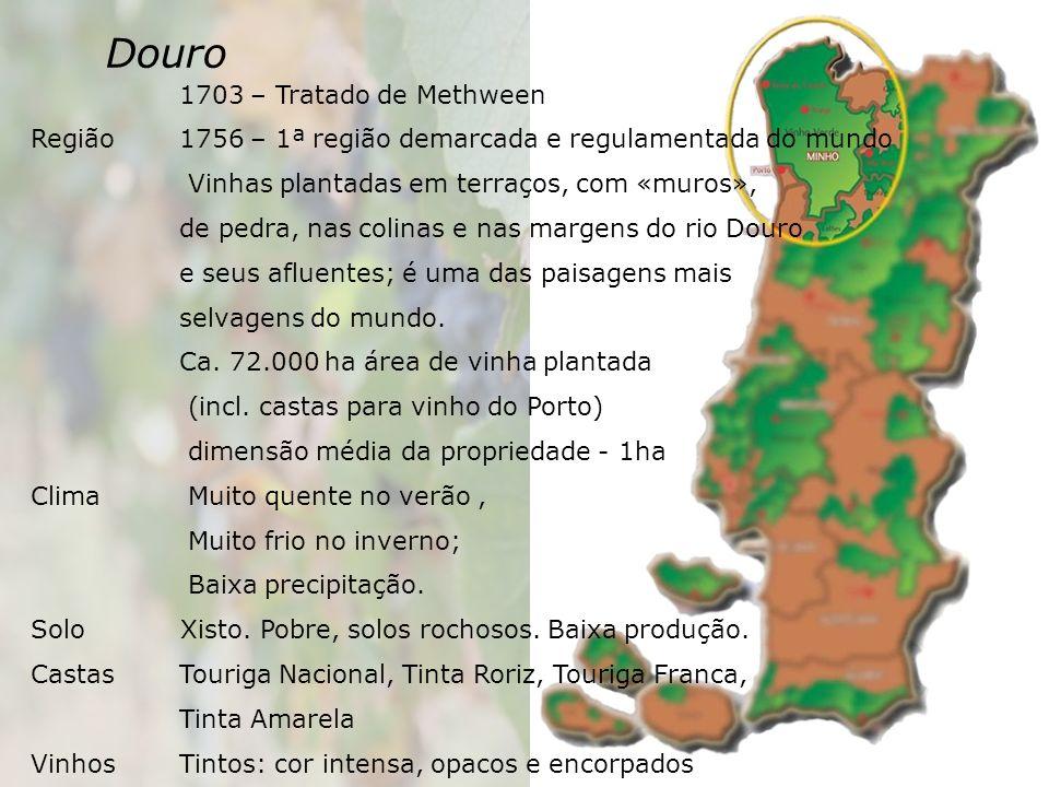 Douro 1703 – Tratado de Methween Região 1756 – 1ª região demarcada e regulamentada do mundo Vinhas plantadas em terraços, com «muros», de pedra, nas colinas e nas margens do rio Douro e seus afluentes; é uma das paisagens mais selvagens do mundo.