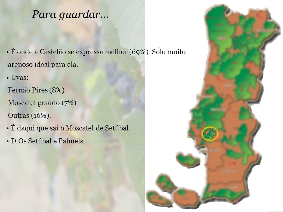 É onde a Castelão se expressa melhor (69%).Solo muito arenoso ideal para ela.