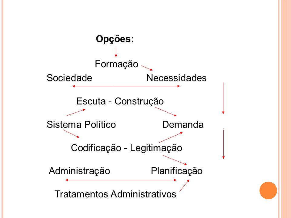 Formação Sociedade Necessidades Escuta - Construção Sistema Político Demanda Codificação - Legitimação Administração Planificação Tratamentos Administ