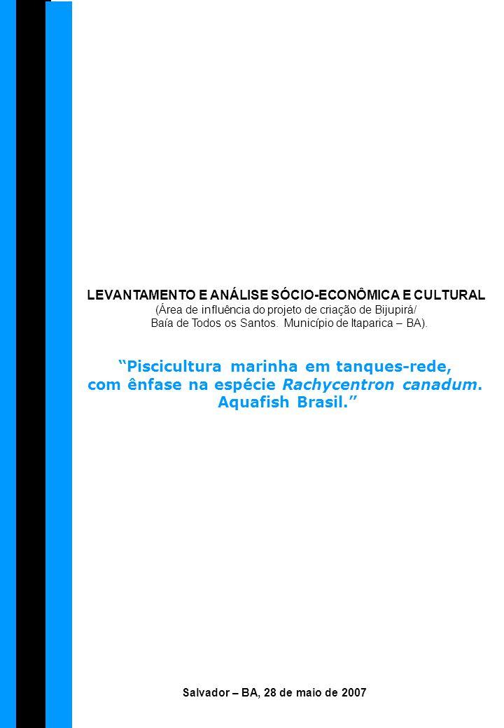 LEVANTAMENTO E ANÁLISE SÓCIO-ECONÔMICA E CULTURAL (Área de influência do projeto de criação de Bijupirá/ Baía de Todos os Santos. Município de Itapari