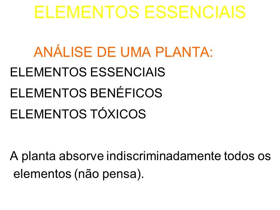 1.ELEMENTOS ESSENCIAIS: São os elementos minerais sem os quais a planta não vive ( C, O e H são tidos como orgânicos)
