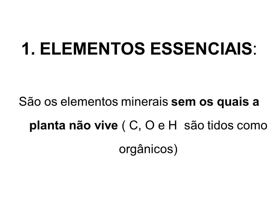PLANTA: 90 – 95 % : C, H, O C – CO 2 H – H 2 O O – CO 2 e H 2 O luz 6 CO 2 + 6 H 2 O C 6 H 12 O 6 + 6 0 2 clorofila 5 -10% : minerais (solo)