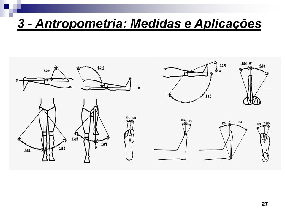 27 3 - Antropometria: Medidas e Aplicações