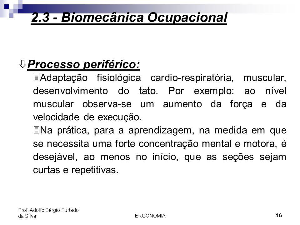 ERGONOMIA 17 Prof.