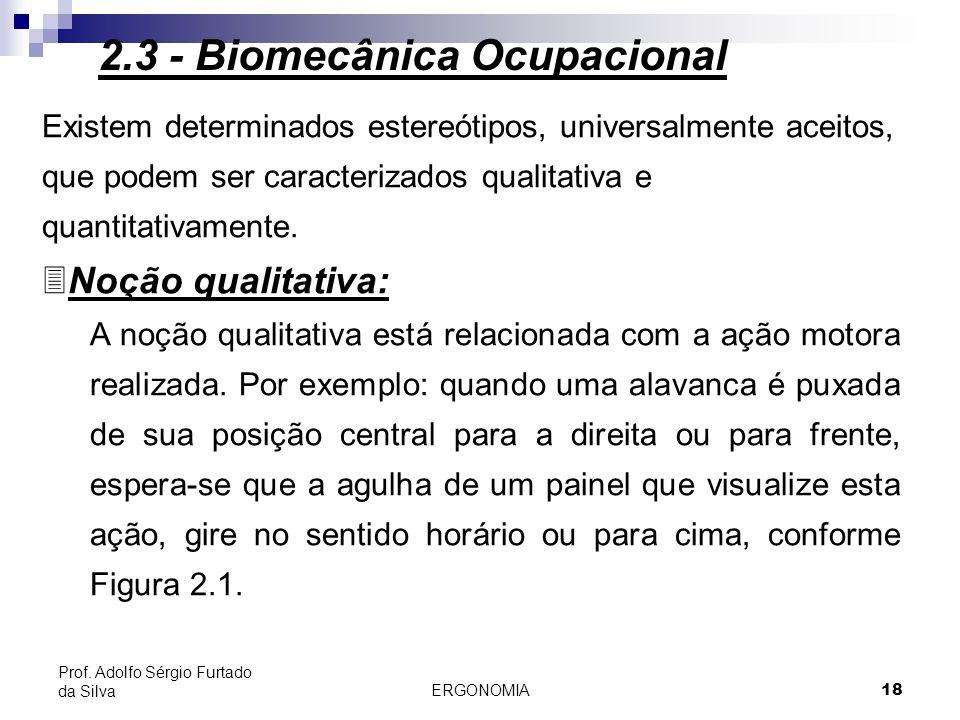 19 Figura 2.1 - Esteriótipos universais: noção qualitativa 2.3 - Biomecânica Ocupacional