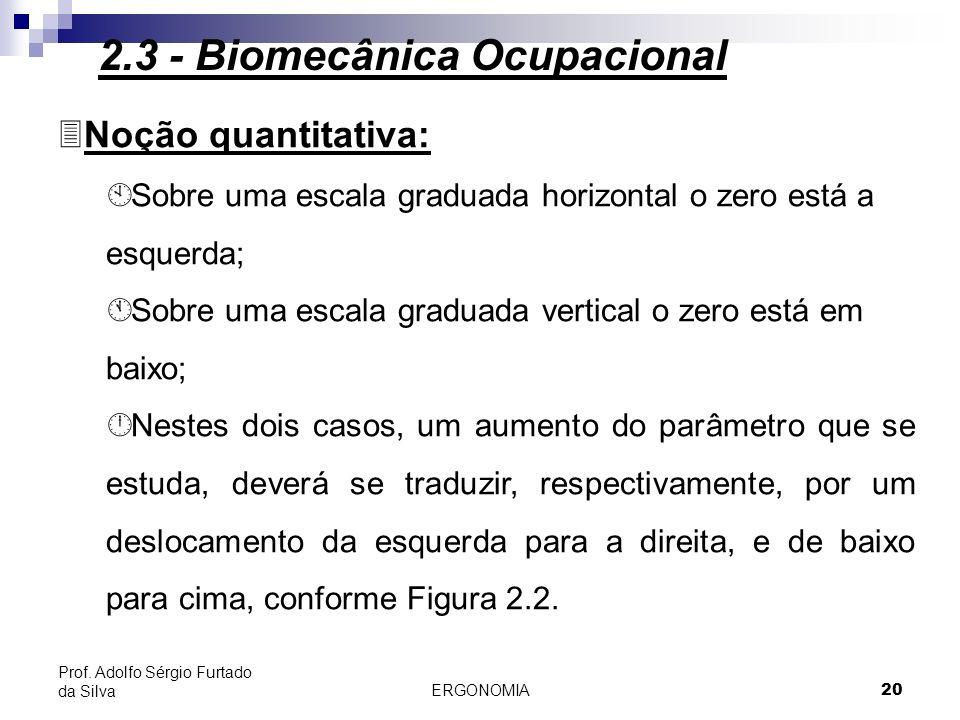 21 Figura 2.2 - Esteriótipos universais: noção quantitativa 2.3 - Biomecânica Ocupacional