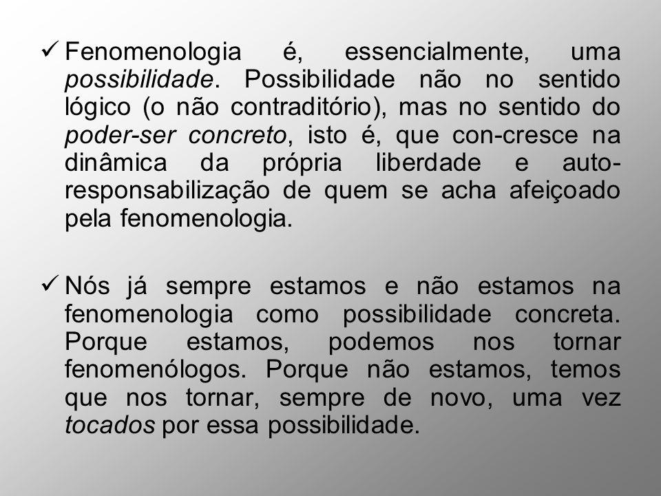 Fenomenologia é, essencialmente, uma possibilidade. Possibilidade não no sentido lógico (o não contraditório), mas no sentido do poder-ser concreto, i