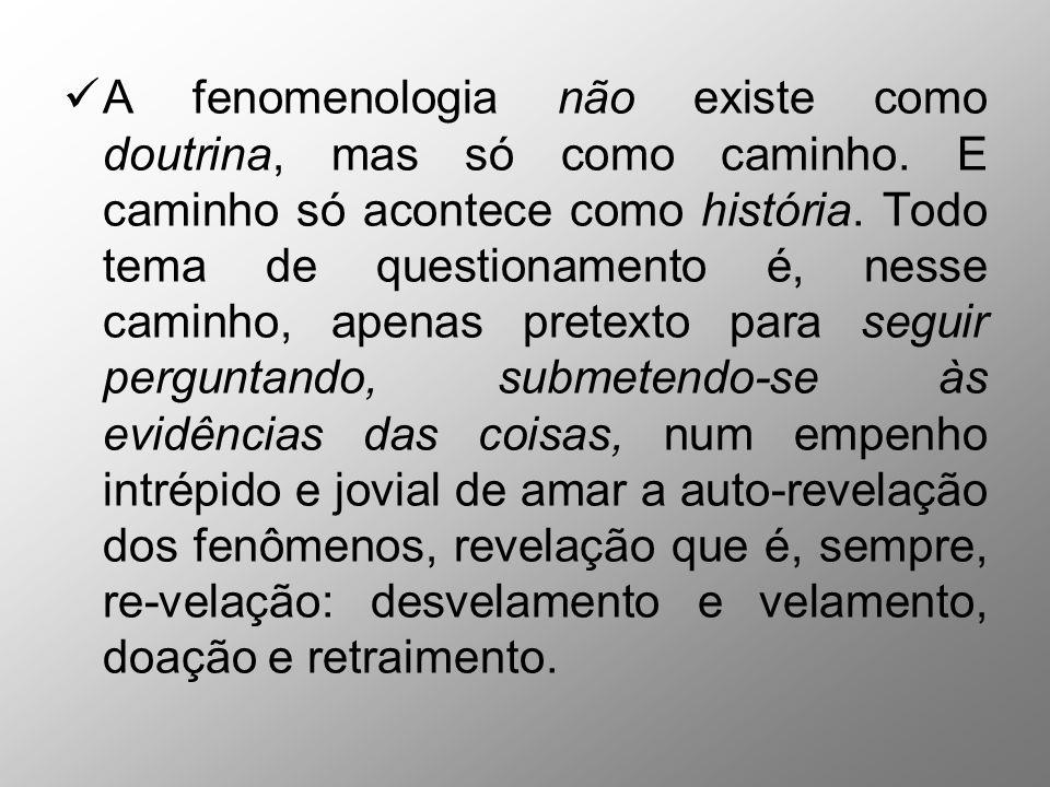 A fenomenologia não existe como doutrina, mas só como caminho. E caminho só acontece como história. Todo tema de questionamento é, nesse caminho, apen